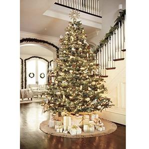 Ballard Christmas Tree