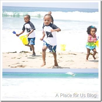 Malibu Beach 23