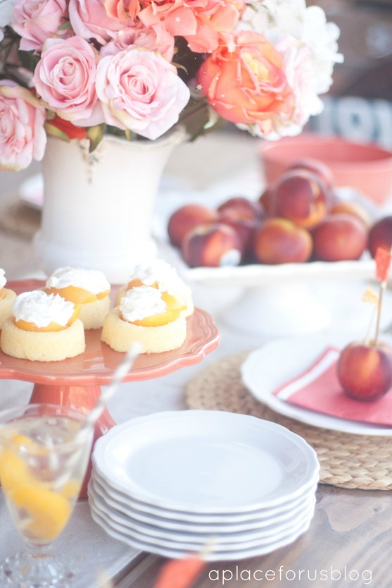 Peach Party Theme