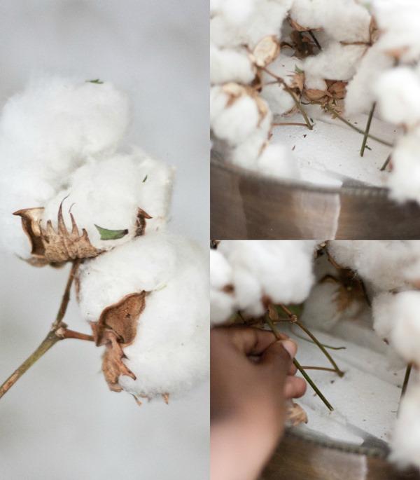 Thanksgiving Cotton Centerpiece