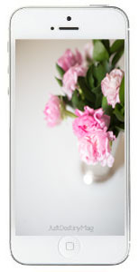 Free-Floral-iphone-wallpape