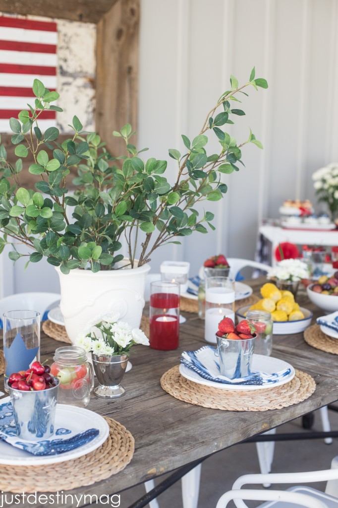 Fourth of July Party Ideas-21