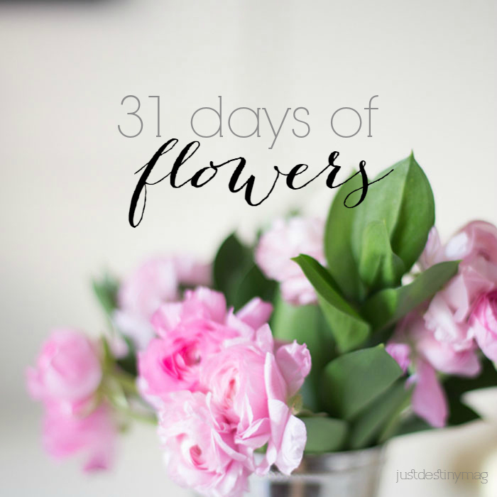 31-Days of Flowers Just Destiny Mag