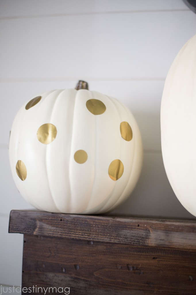 Easy and Simple Fall Decor-29
