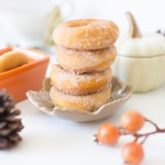 Infused Pumpkin Donuts with Cinnamon and Sugar Coating