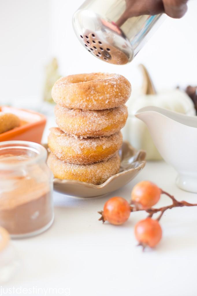 Pumpkin Donuts with Cinnamon and Sugar_-5