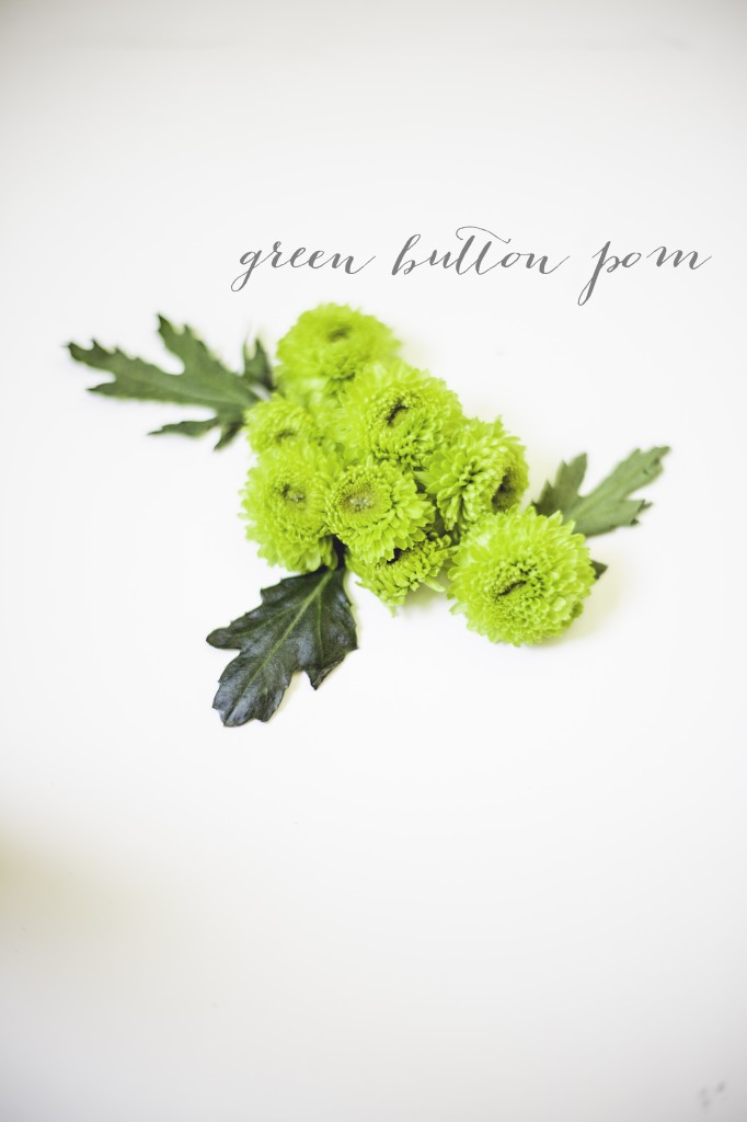31 Days of Flowers Green Button Pom