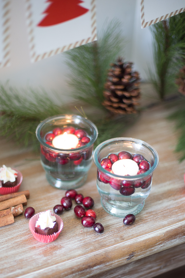Candle and Cranberries- Just Destiny Mag