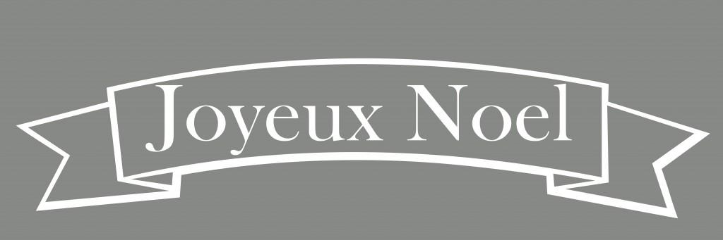 Joyuex Noel_edited-1