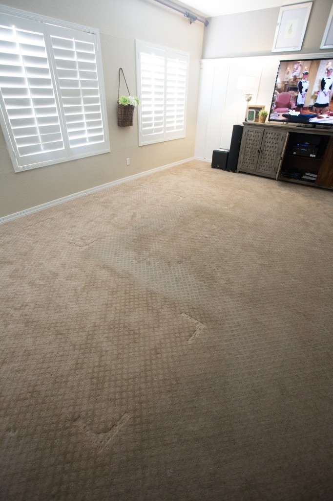 Carpet Cleaning with Zerorez-2