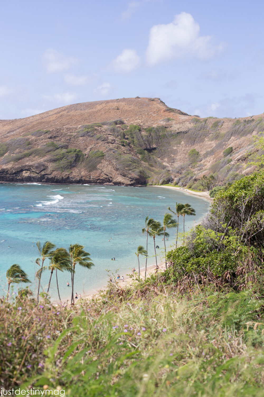 Hawaii Travel: Favorite Oahu Spots