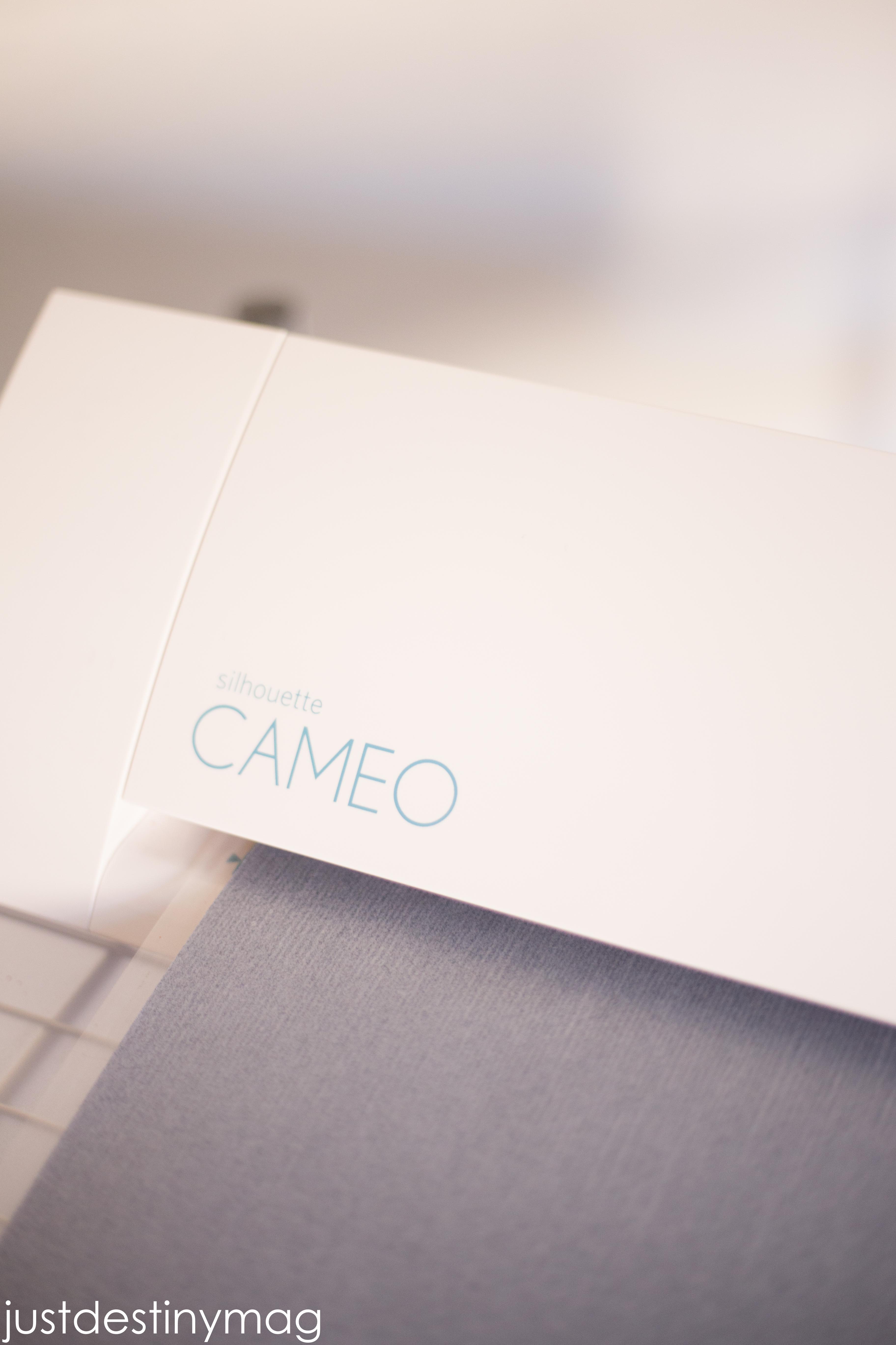 Silhouette Cameo Sale_-4
