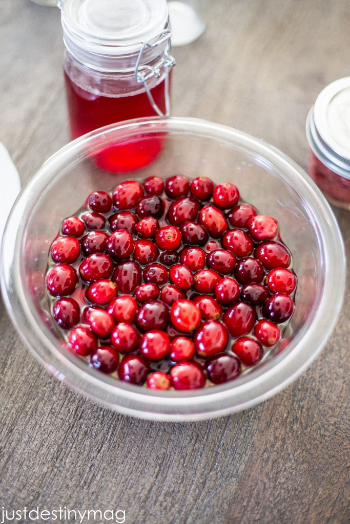 Cranberry Recipe and Gift Ideas for the Holidays -Just Destiny Mag-14