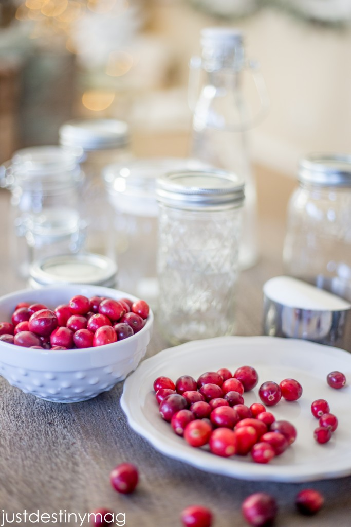 Cranberry Recipe and Gift Ideas for the Holidays -Just Destiny Mag-2