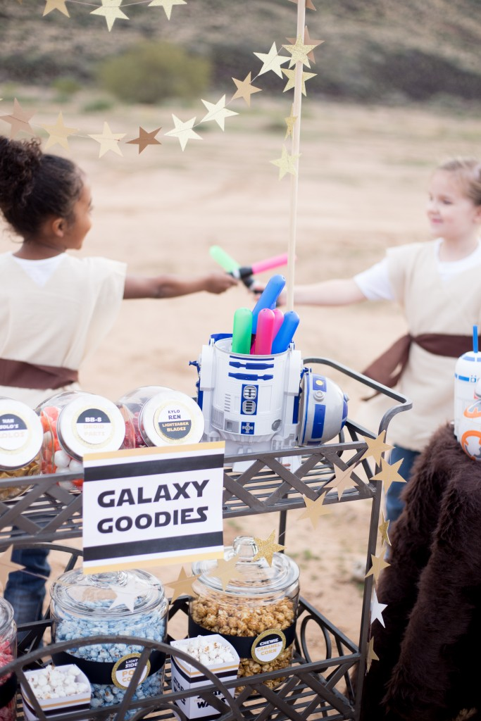 The Force Awakens Birthday Party_-41