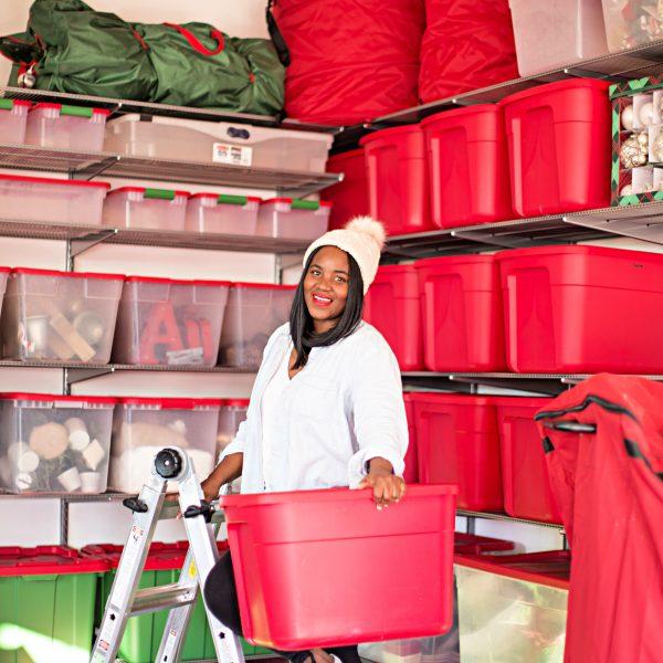 Garage Christmas Decor Storage